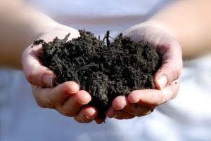 compost-handen_vlaco_LR